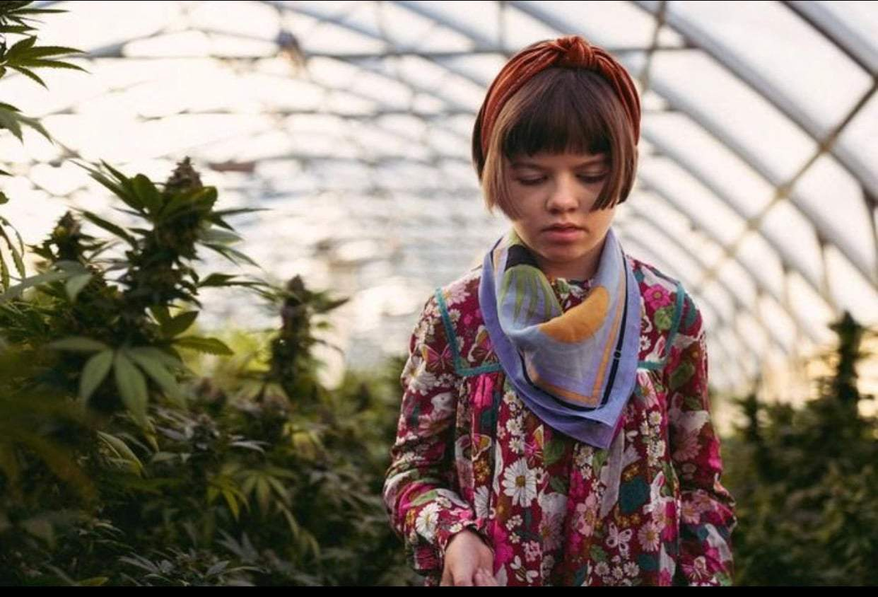 charlotte figi, the young girl who suffered from Dravet syndrome, walking through a cannabis grow house. She is surrounded by off focus cannabis plants. CBD revolution