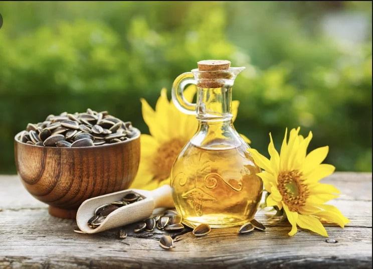sunflower carrier oil cbd oil