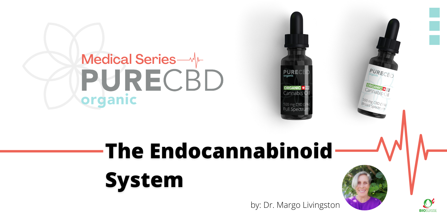 Pure Organic CBD medical blog series about the endocannabinoid system