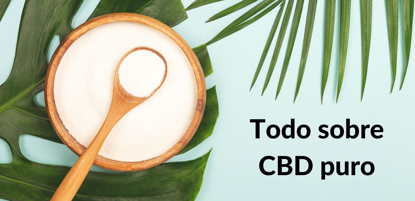 All About Pure CBD