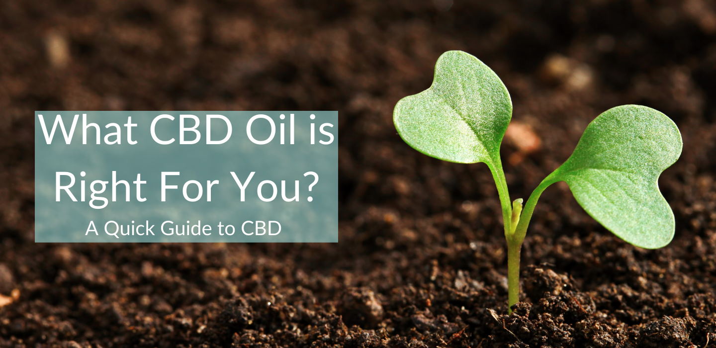 cbd oil is right for you