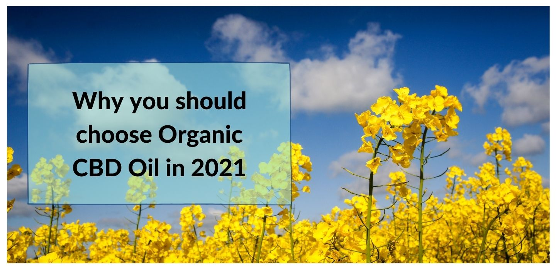 Why organic CBD oil
