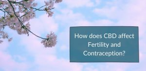 does CBD affect fertility and contraception