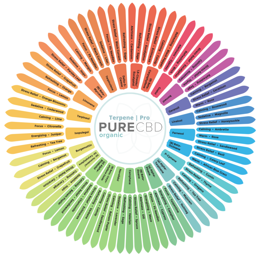 Our useful and handy terpene wheel sourced from industry leading research