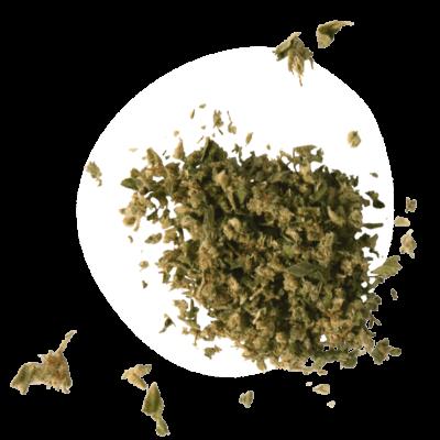 our-shake-hemp